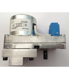 Motoréducteur PALAZZETTI 1,46 rpm CW
